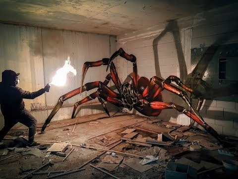 ODEITH // ANAMORPHIC - time lapse - huge Spider // Hollywood Style
