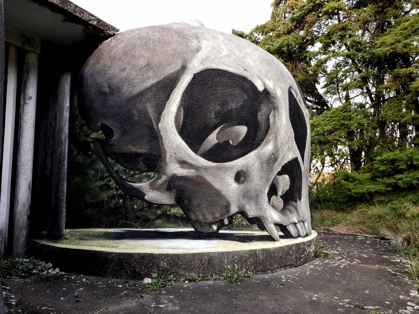 Odeith's squirrel monkey skull piece
