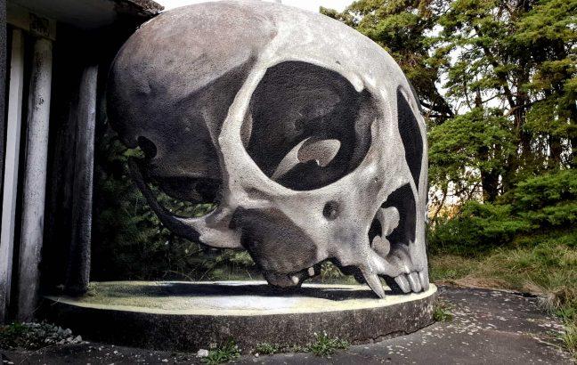 Odeith's squirrel monkey skull piece